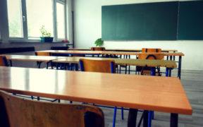 Professor Teaches in the K-12 Classroom